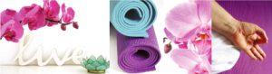 TOST_YOGA_Kundalini_Yoga_Live