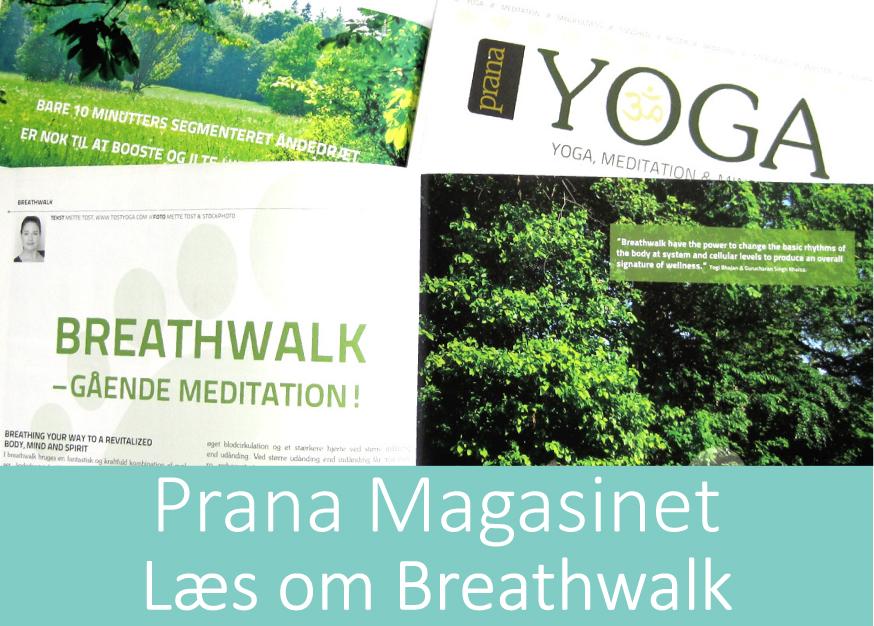TOST_YOGA_Breathwalk_Prana