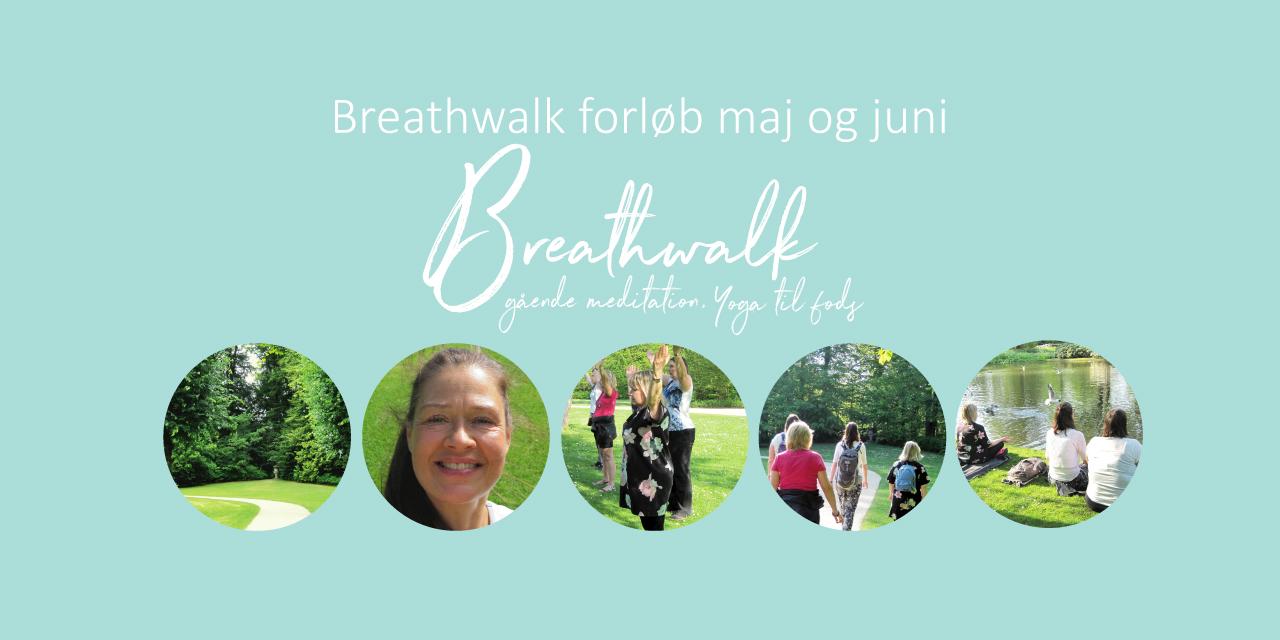 Breathwalkjunimaj19